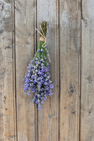A bouquet of lavender hanging on an old wooden door