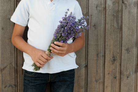 sholders: Child in his hands lavender. Stock Photo