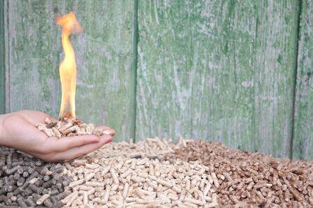 holzbriketts: Pellets in Flammen in weiblicher Hand-selektiven Fokus auf der Hand und dem Heap