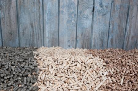 holzbriketts: Baum Art von Pellets Infront alte Holzt�r - selektiven Fokus auf dem Heap
