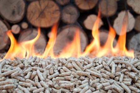 Pellet in flames- stock photo