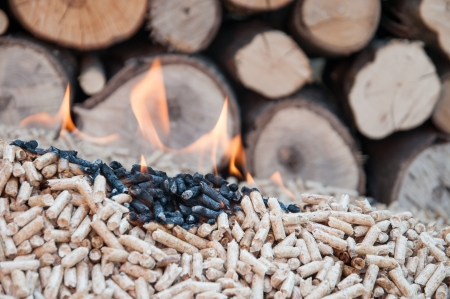 Pine pellets in flames- stock image Stock Photo