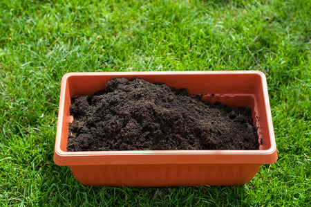 Pot with compost on a green grass