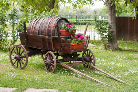 Old wooden wagon with old wooden keg in a garden photo