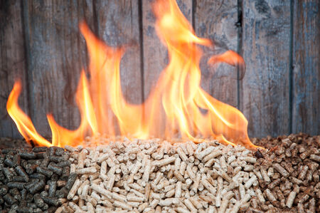 Three kind of pellets in flames photo