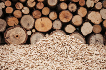 wood pellet: Pine pellets infront a wall of firewoods Stock Photo