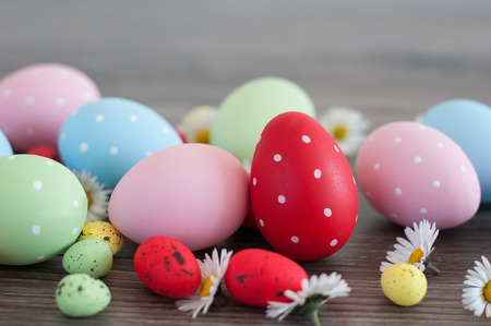 Different color Easter eggs on an old wood andspring flowers