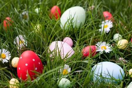 Multicolored Easter eggs in a grass photo
