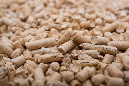 holzbriketts: Peletss Biomasse N�he von Studio gedreht Lizenzfreie Bilder