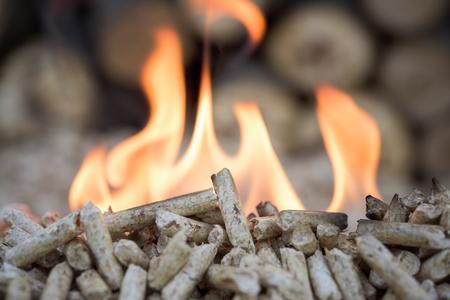 biomasa: Pellets de biomasa en llamas, primer plano, foco selectiv