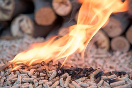 pellet di abete in Flames- dietro di loro ci sono boschi