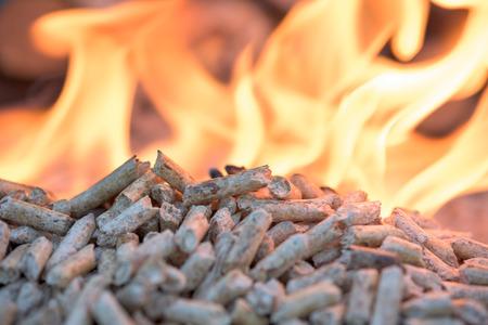 biomass: Biomass in flames- oak pellets, close up Stock Photo