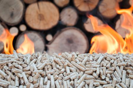 biomasa: La quema de pellets de roble delante de un bosque pileof
