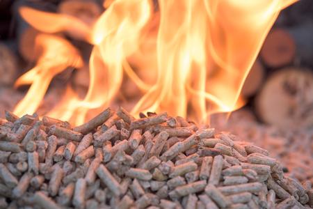Fir Wooden biomass in flames- close up Stockfoto