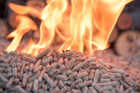 Fir Wooden biomass in flames- close up Stock Photo