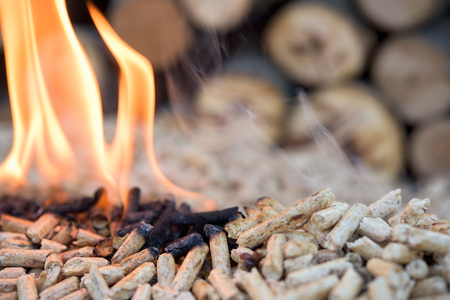 Close up of pine pellets in flames