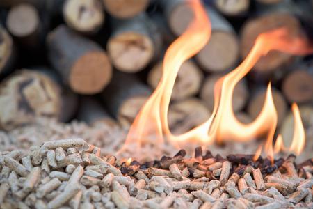 Renewable energy - wooden pellets in fire
