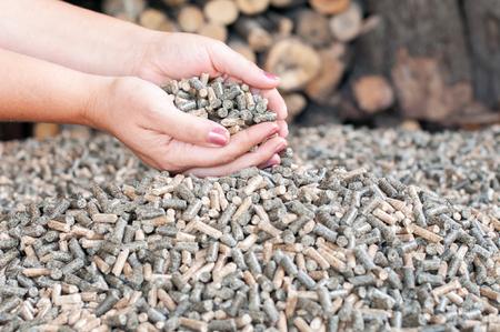 Houten pellets in vrouwelijke hans - duurzame energie