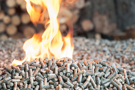 Renewable energy - oak and sunflower wooden pellets in flames Stock Photo