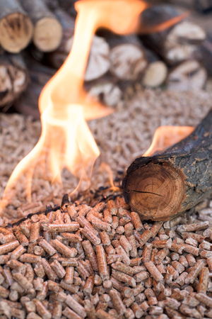 Wooden biomass in flames - close up Stockfoto