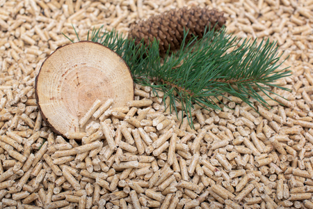 Renewable energy - coniferous materials and pellets made of them