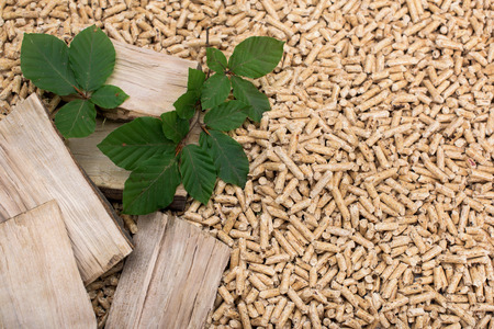 Oak biomass - pile of wood, leaves and pellets