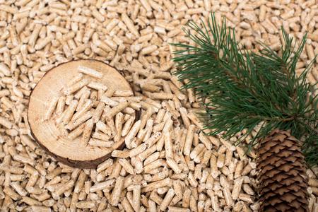 Tranche de pin, brindille et conque sur granulés de bois - biomasse