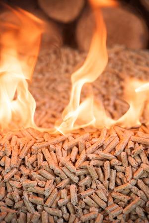 Burning oak pellets -  wooden biomass in flame