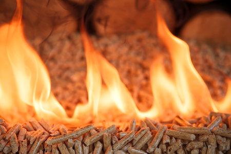 Pile of wood pellets, burning in flames Reklamní fotografie