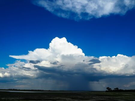Looking at beautiful raining cloud from afar with blue sky background during game drive in Chobe national park