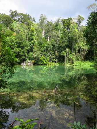 jade plant: Shades of turquoise green colors scene of hot spring pond surrounded by trees with clear water reflection and shadow in Krabi Stock Photo