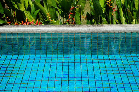 Swimming pool clear water showing turquoise blue clay square tiles and grey cement grout lines with sandwash edge and Bird of Paradise flower in red and yellow blooming with green leaves background