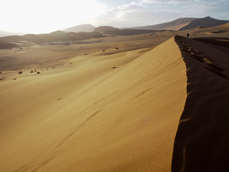 Natural curved ridge line, wind blow pattern and footprint on rusty red sand dune with strong sunlight on vast desert landscape with a traveler standing faraway, Sossus, Namib desert, Namibia