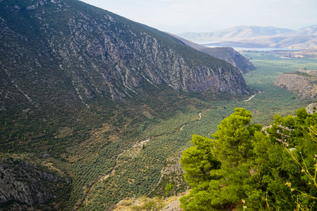 delphi: Beautiful landscape view of Parnassus mountain, green olive groves path through Itea town and Ionian sea with bright blue sky background, Delphi, Greece