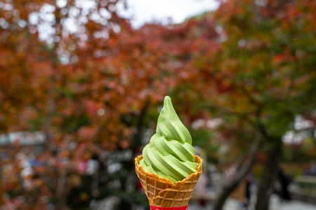 Enjoying delicious sweet japanese matcha green tea ice cream soft serve cone among autumn leaves tree garden blurred background, selective focus, Kyoto, Japan
