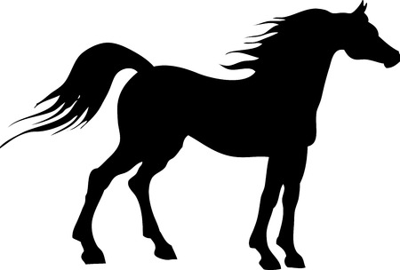 horse harness: Vector illustration of a black horse silhouette