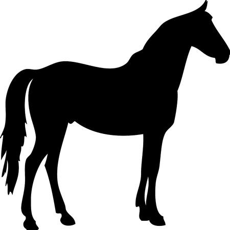 spur: Vector illustration of a black horse silhouette