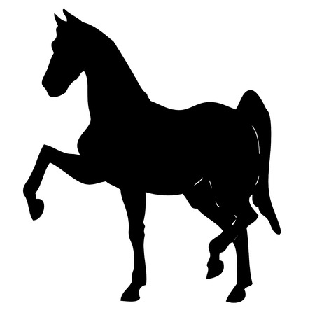 dressage: Vector illustration of a black horse silhouette