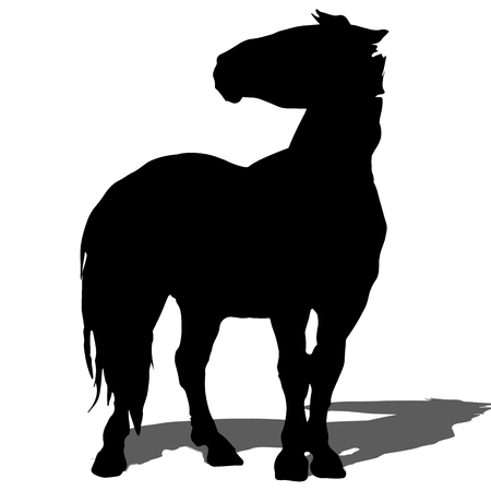 Horse vector silhouette and outline Ilustrace