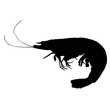 shrimp or prawn silhouette Illustration