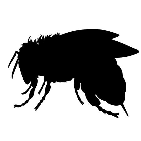 蜂黒のベクトル シルエット  イラスト・ベクター素材