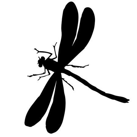 black and white silhouette of a dragonfly