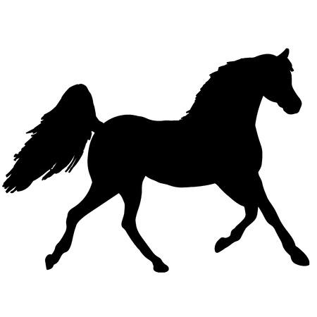 馬罰金ベクトル シルエットと概要 - 優雅な黒種牡馬を飼育  イラスト・ベクター素材