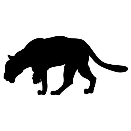 Black panther creeps up to victim Illustration