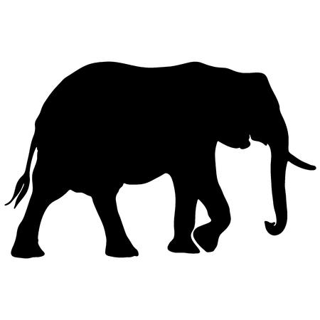 黒と白のベクトルの象のシルエット  イラスト・ベクター素材