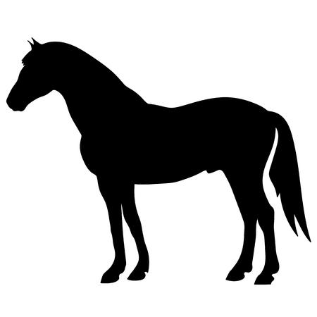 馬のシルエットベクトルイラスト