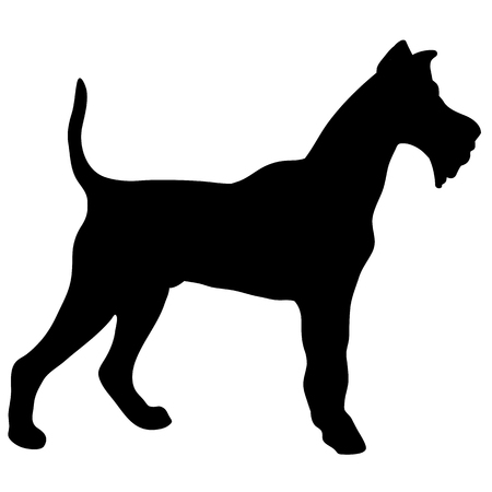 Silhouette of a dog terrier black illustration