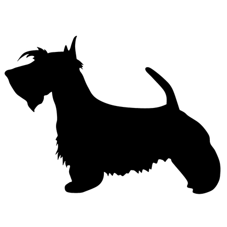 Silhouette of a dog. terrier black illustration