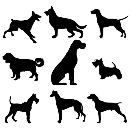 Black and white vector silhouette of a dog. Clipart. Illustration