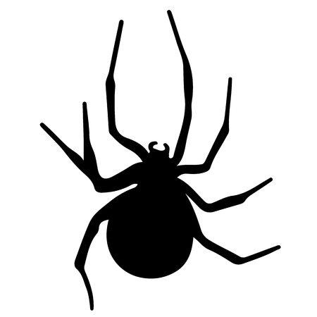 Vector silhouette of a black spider
